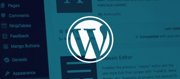 WordPress入门教程 – 自动/手动更新版本